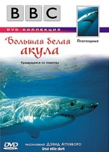 BBC: Большая белая акула - фильм (1999) на сайте о хорошем кино Устрица