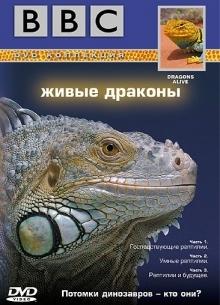 BBC: Живая природа. Живые драконы - фильм (2004) на сайте о хорошем кино Устрица