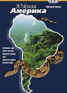 BBC: По странам и континентам. Южная Америка (Часть 2) - фильм (2000) на сайте о хорошем кино Устрица