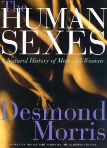 Мужчина и Женщина (Часть 1) - фильм (1997) на сайте о хорошем кино Устрица