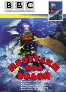 BBC: Прогулки под водой - фильм (1991) на сайте о хорошем кино Устрица