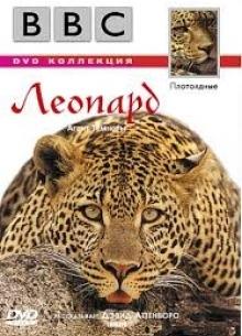 BBC: Леопард - фильм (1997) на сайте о хорошем кино Устрица