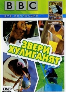 BBC: Звери хулиганят - фильм (2004) на сайте о хорошем кино Устрица