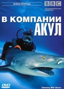 BBC: В компании акул - фильм (2002) на сайте о хорошем кино Устрица