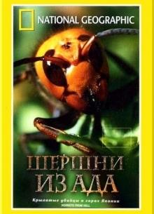 National Geographic: Шершни из ада - фильм (2002) на сайте о хорошем кино Устрица