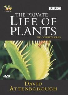 BBC: Невидимая жизнь растений (Часть 1) - сериал (1995) на сайте о лучших фильмах и сериалах Устрица